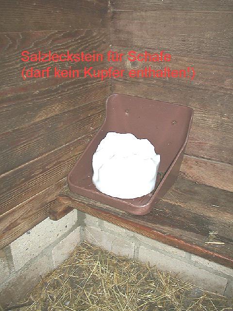 Salzleckstein